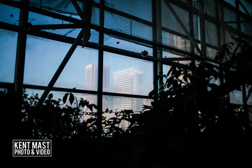 BaltimoreAquarium-20.jpg by kentmastdigital