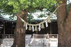 Japon, Tokyo, Sepulcro de Meiji
