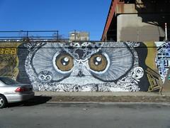 Owl eyes mural