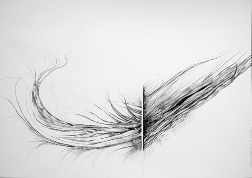 terceiro - desenho a tinta da China by fernanda garrido