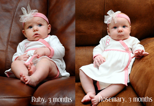 Ruby vs. Rosemary - 3 months