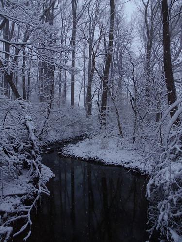 usa snow nature creek landscape stream pa newtown buckscounty tylerpark