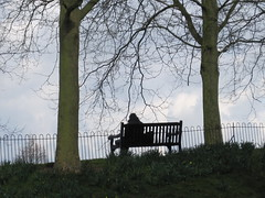 Sitting in the park IMG_0321