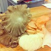 Beautiful mushrooms from @plantchicago to appear on Sunday's RoyalTea