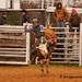 Junior Bull Riders Association, March 2013