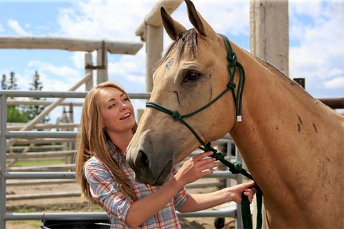 amy from heartland and horse