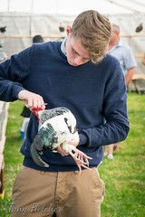 'THE 127th EGTON AGRICULTURAL SHOW' - AUGUST 2016