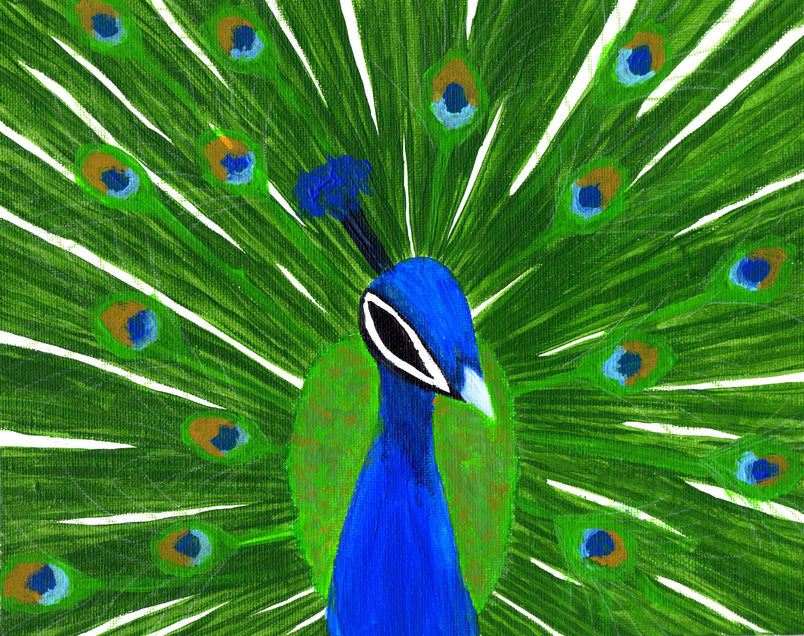 peacock essay in marathi