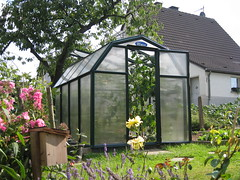 Ein Zuhause für die Pflanzen