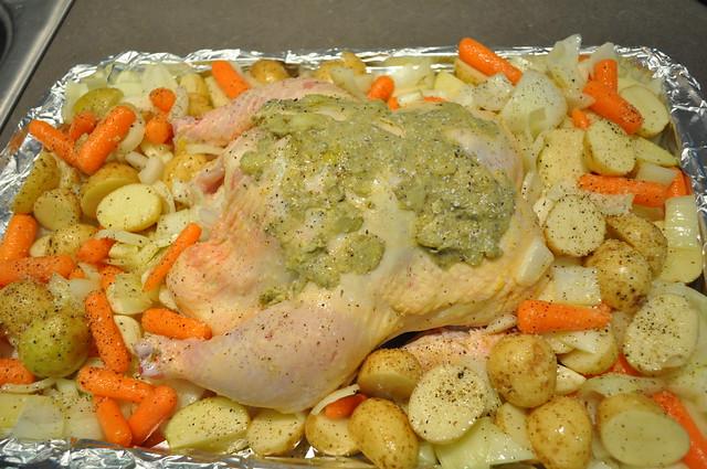 Chicken 1-14-13 (19)