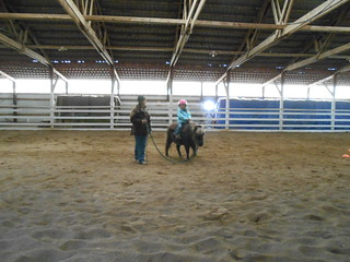 Horse Lessons- 18Jan13 (16)