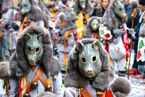 A parade of rats