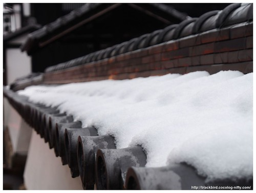 Roof snow #01