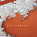 Saltscapes cover by KAP Cris