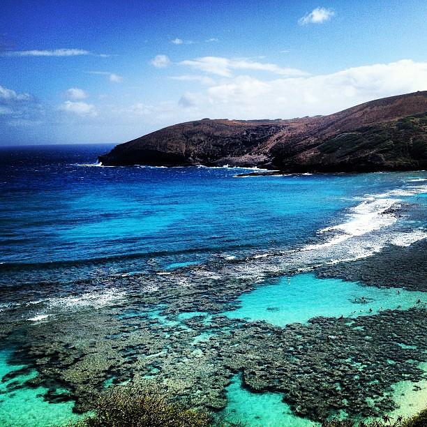 #HanaumaBay #hawaii #coral #reef #snorkling #blue #sea