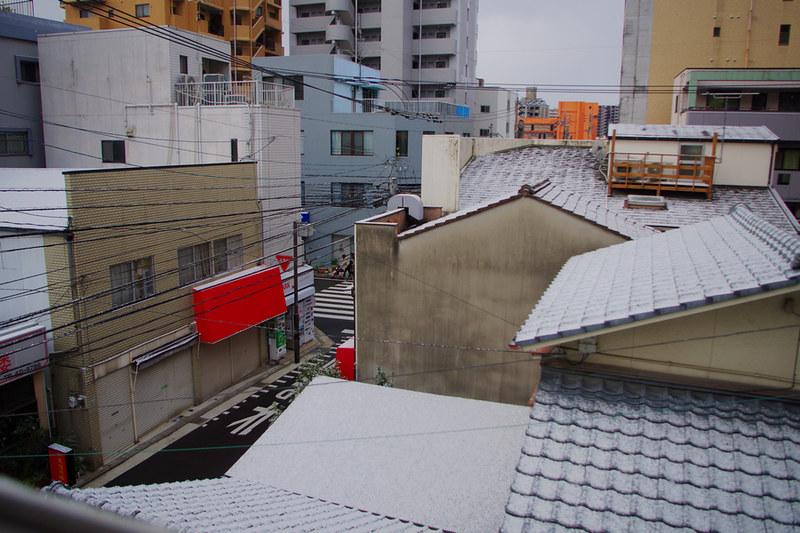 2月8號-一場意外的雪