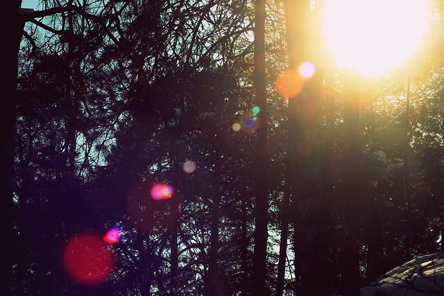 aurinko - kevät 243