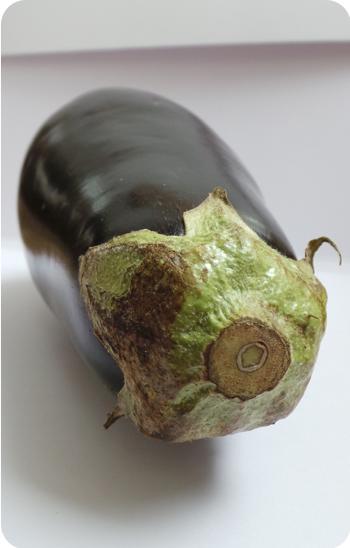 eggplant for web