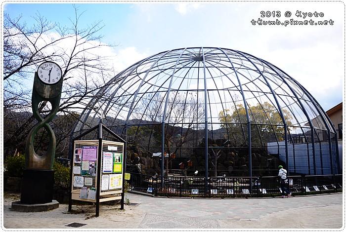 京都動物園 (2).jpg