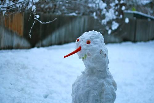 snowman's profile