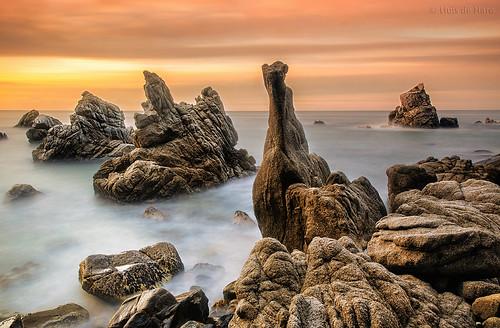sunset sea paisajes naturaleza sun sol nature landscape landscapes mar nikon mediterraneo seascapes natura paisaje catalonia catalunya cataluña rocas roques paisatge lloretdemar paisatges mediterrani calafrares