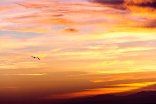 sunset españa clouds canon landscape atardecer spain paisaje nubes orangesky dslr goldenhour ceuta 60d specsky horadorada cieloanaranjado carloslarios