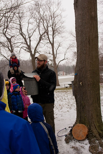 maple sugaring (5)