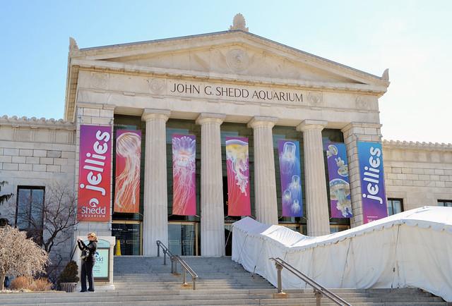John G Shedd Aquarium John G Shedd Aquarium Chicago