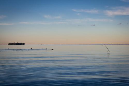 2016 millelacskathiostatepark september minnesota millelacs lake sunset