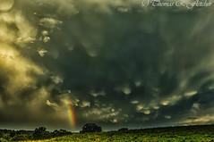 Mammatus Clouds and Rainbow