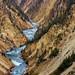 Canyon - Yellowstone, USA by Clotylde