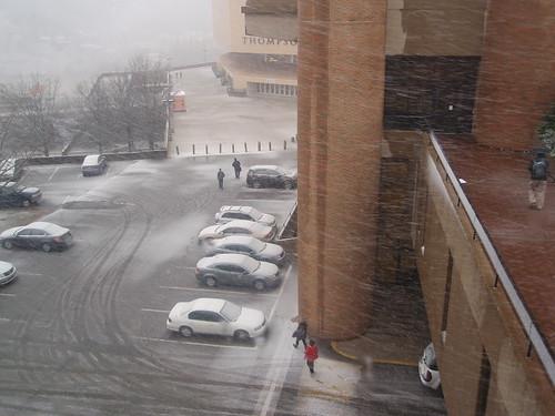 parking lot #31