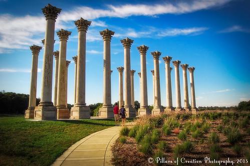 Something to Hold the Sky Up - Capitol Columns - US National Arboretum - Washington, DC