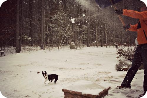 Charlies 2nd Snow Jan 2013 019edit