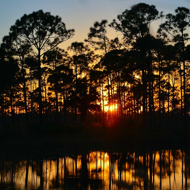 Sunset, Jonathan Dickinson State Park, Florida