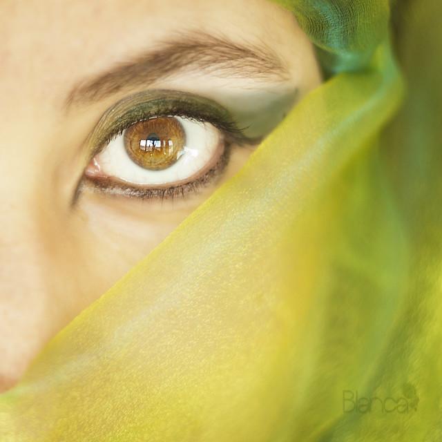 L'essentiel est invisible pour les yeux (1/12)