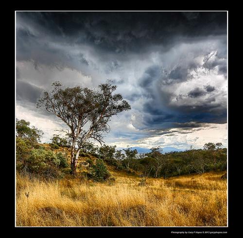sydney coastal coogee cloudscapes