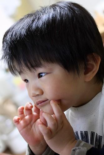 真剣にテレビを観ているとらちゃん 2013/2/17