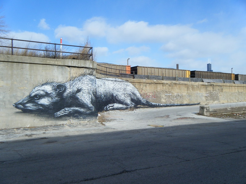 Wounded rat mural from left
