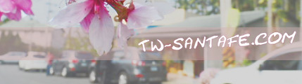 tw-santafe.com