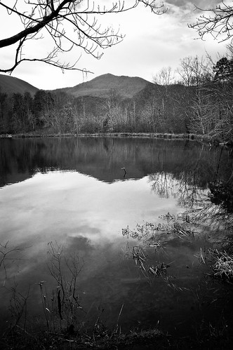 BW Twin Ponds