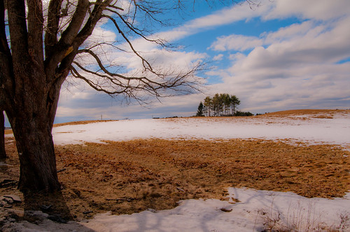 trees winter sky snow landscape day maine newengland kennebunkport
