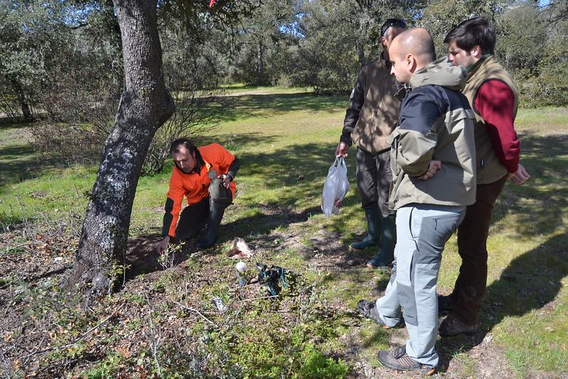 Reunión o rastros por Madrid - Página 3 8588827921_493b282f97_c