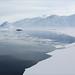 Bellsund, Svalbard by Håkon Kjøllmoen, Norway