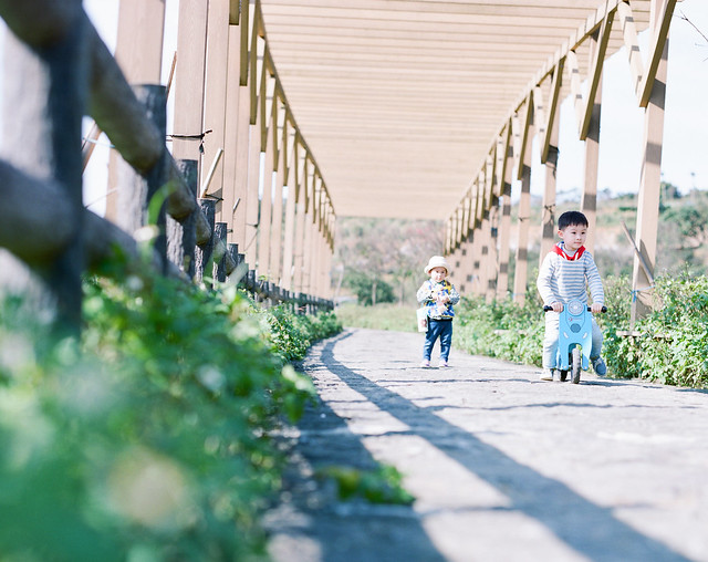walk together in same direction