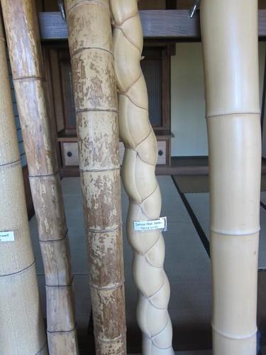 Hakone Japanese Gardens, Saratoga, CA, bamboo IMG_2386