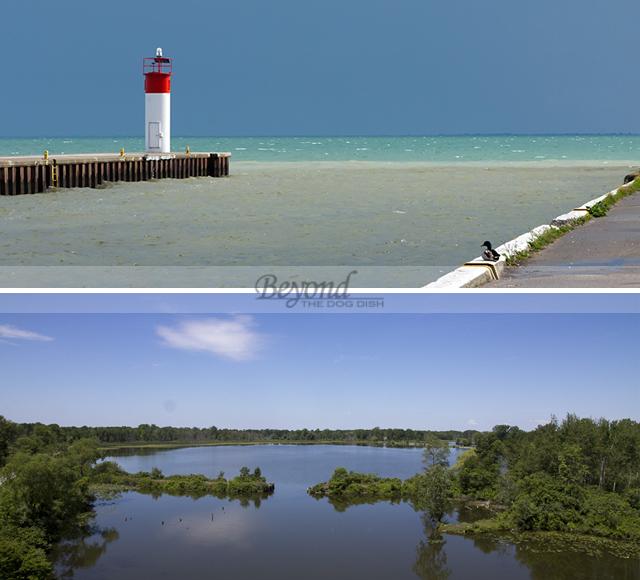 2012-1946-1948-PortDover