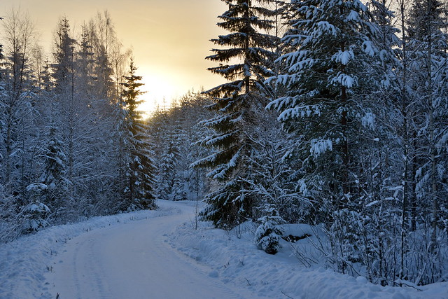 Winter Scenes from Eastern Finland
