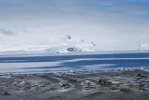 南極附近海域。(來源:Natalie Tapson)