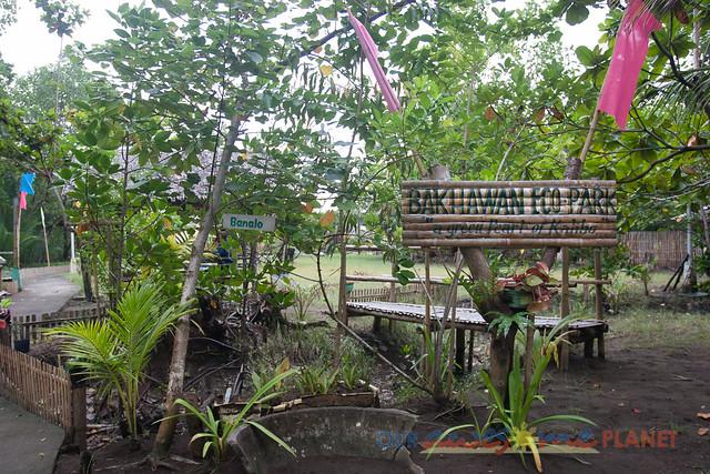 Bakhawan Eco-Park-89.jpg